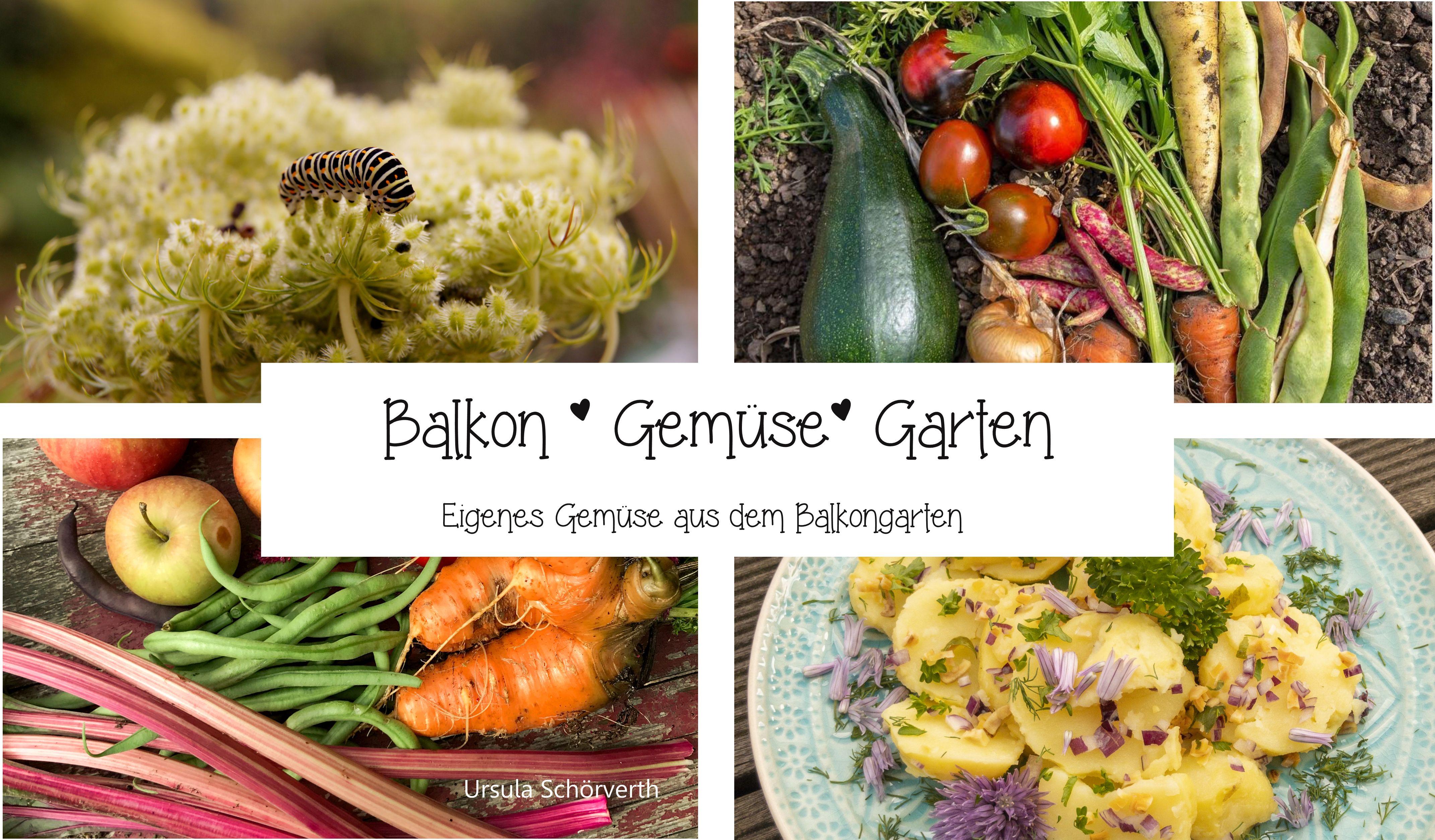 """Buch """"Balkon Gemüse Garten"""""""