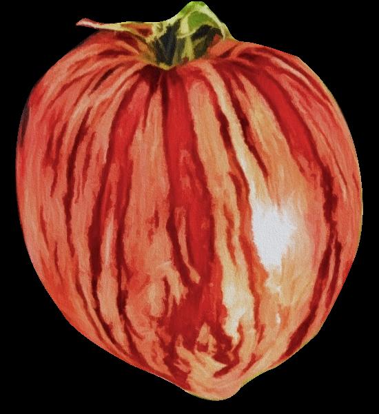 Tomate_frei