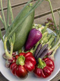 Zutaten Frittata Paprika Zucchini Erbsen